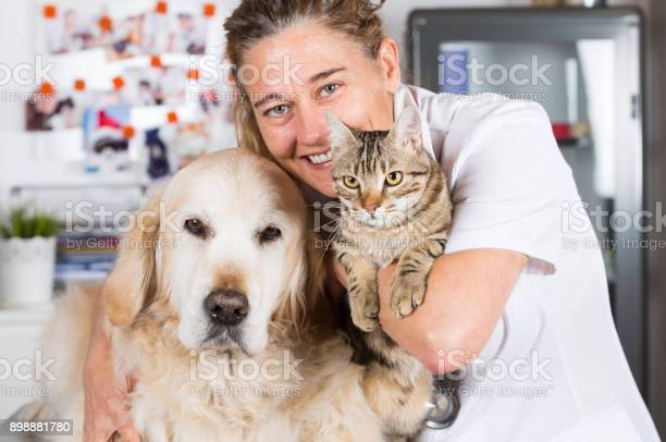 Veterinary clinic picture id898881780?b=1&k=6&m=898881780&s=612x612&h=nlhs pxewzewrwbdz 79bmgvedx4gzmimi2y9n9klsm=
