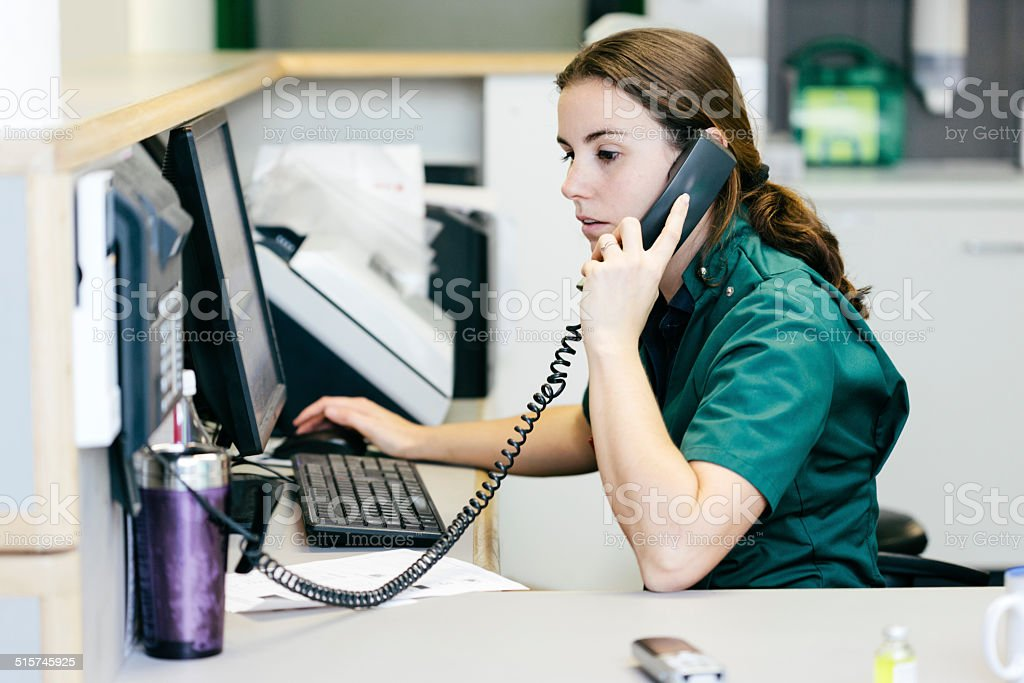 Veterinary Nurse working on computer stock photo