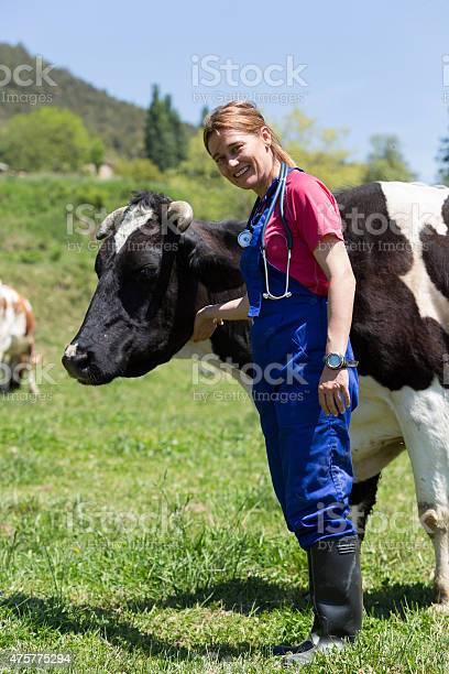 Veterinary on a farm picture id475775294?b=1&k=6&m=475775294&s=612x612&h=miog09nd80luojbyjvnhlmf87hj6wbiss9cj k5gv a=