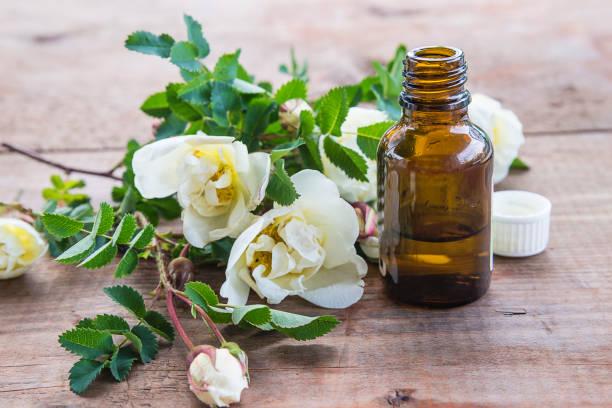 frasco com óleo essencial de flores selvagens de rosas brancas - foto de acervo
