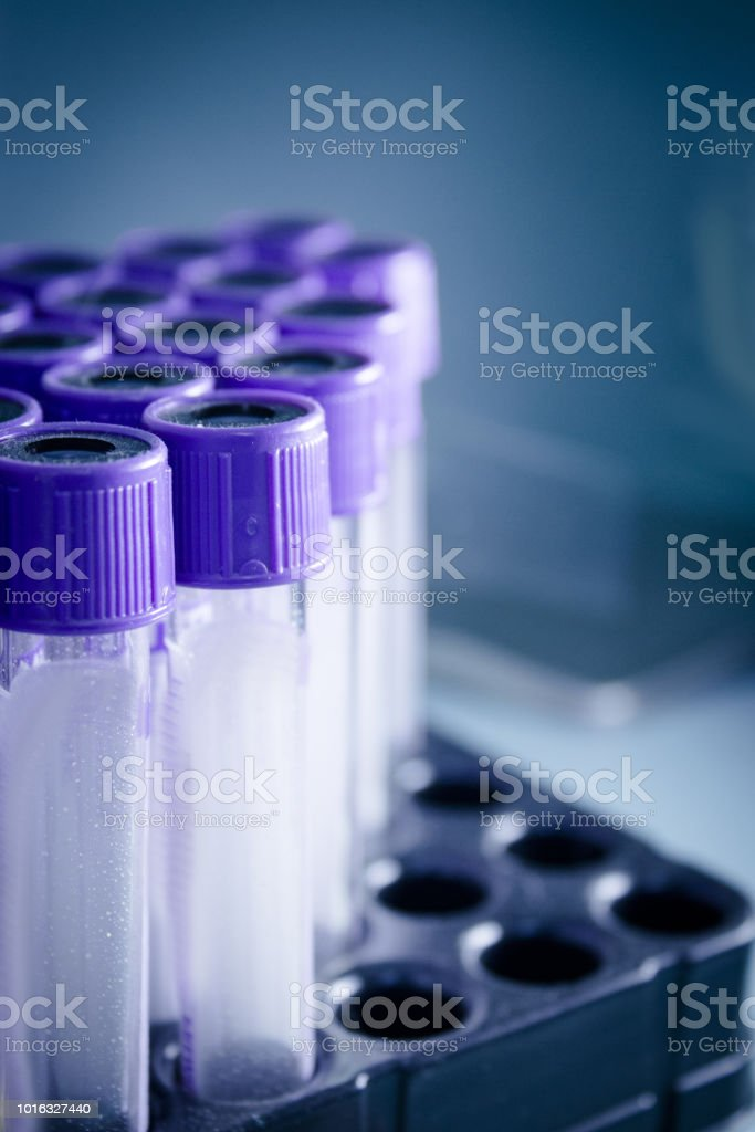 Vials for veterinary use to cure different diseases. No people stock photo