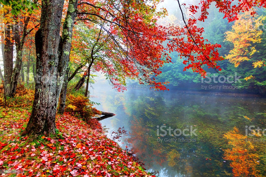Vibrant autumn colors along a small stream in New Hampshire stock photo
