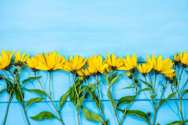 lebendigen blumen rahmen über blauer tisch, floraler hintergrund, textfreiraum - herbst hochzeitseinladungen stock-fotos und bilder