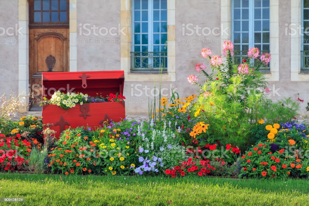 Vibrant flowers in Nevers stock photo