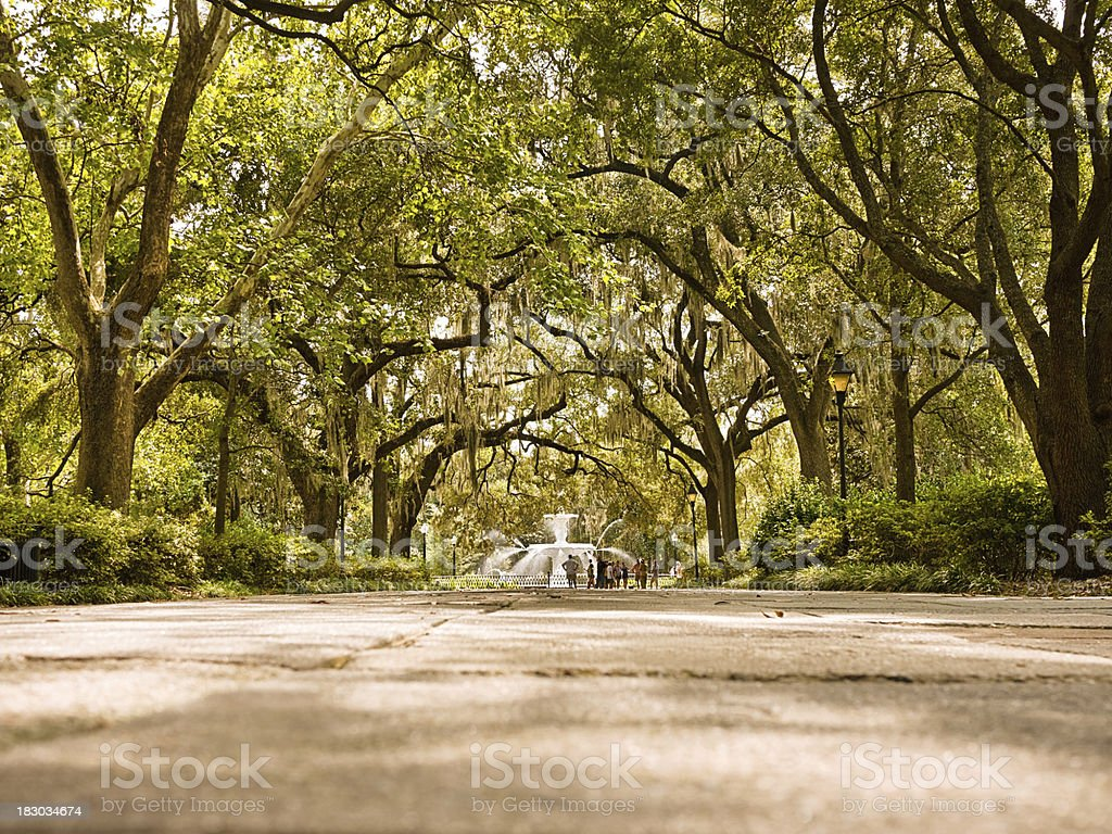 vibrant Forsyth Park in Savannah stock photo