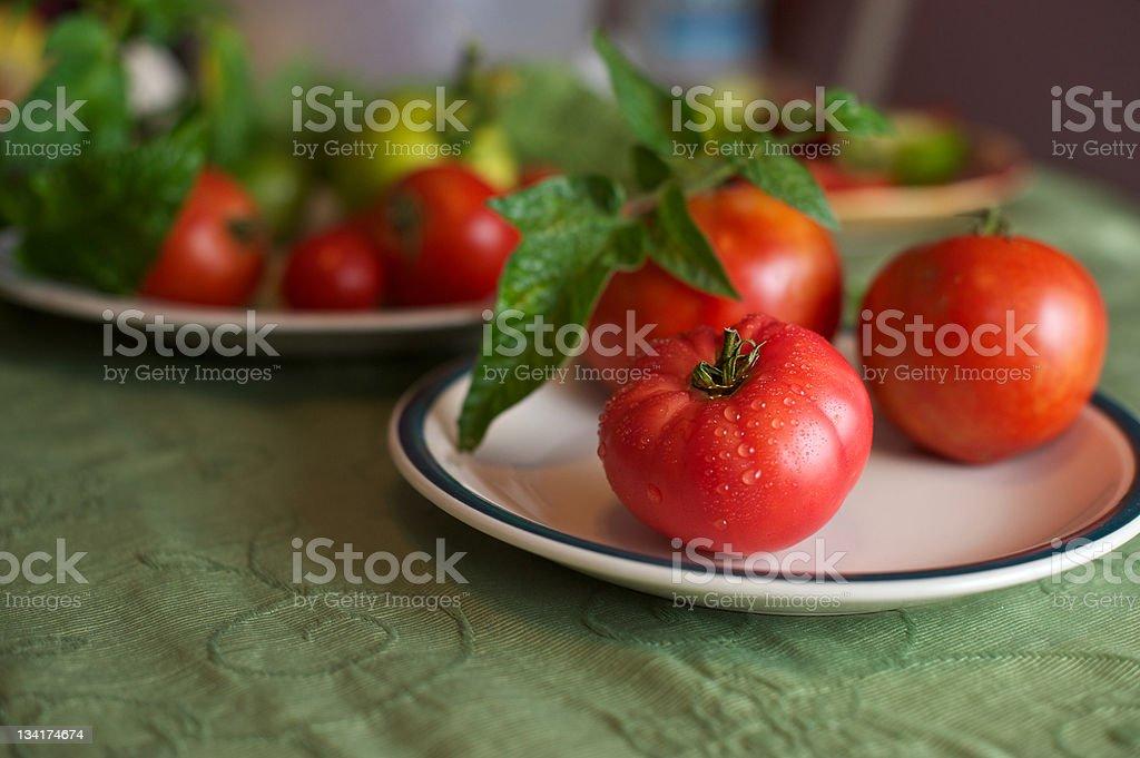 Vibrant Fresh Red Tomato stock photo