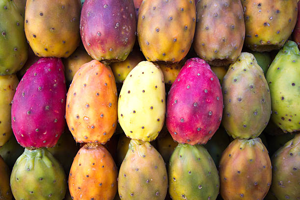 vibrant multi-colored prickly pears lined up (close-up, full frame) - fruto do cacto - fotografias e filmes do acervo