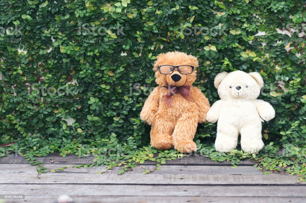 Vibrant outdoor photo of teddy bear sitting on the yard at the park...