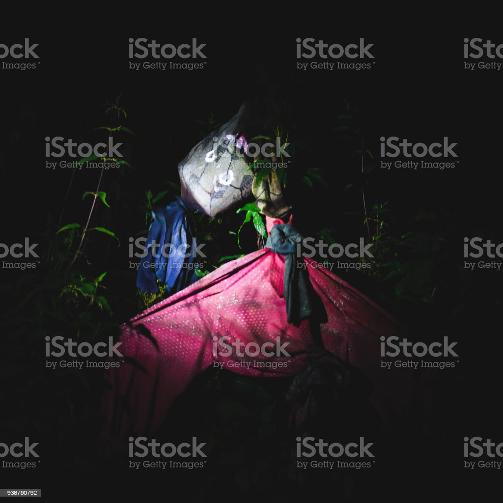 Vibrant picture of scarecrow in countryside stock photo