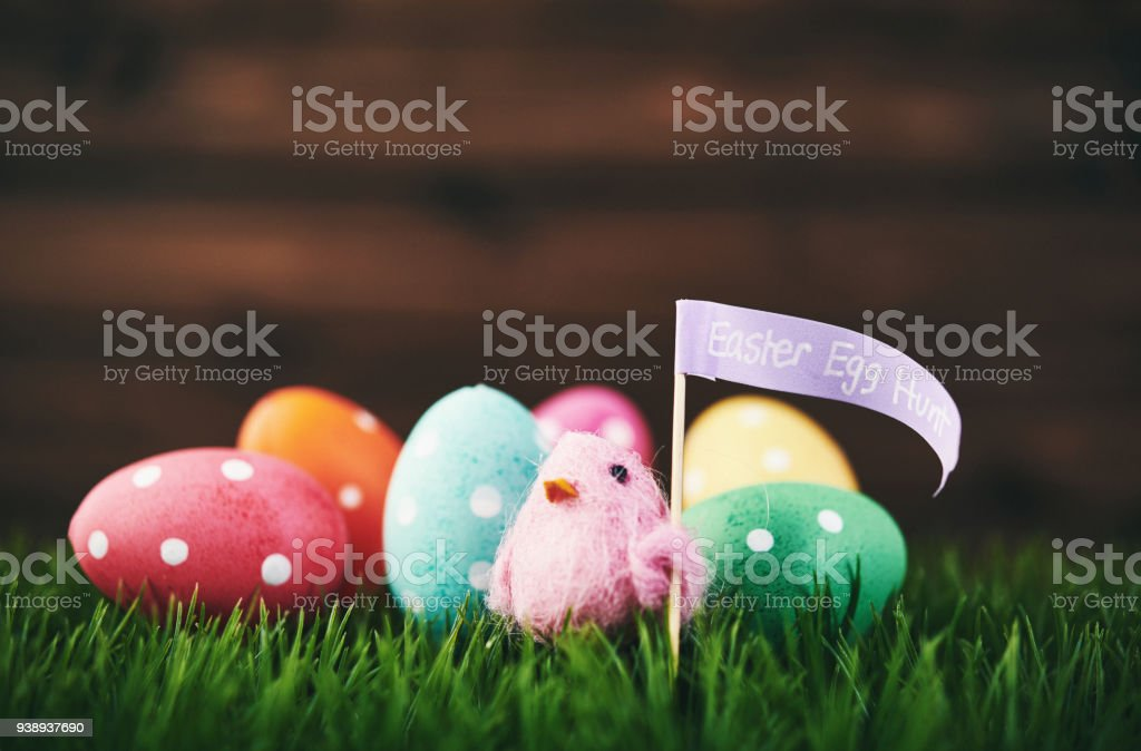 vibrant polka dot easter egg hunt background with pink easter chick royalty free stock photo