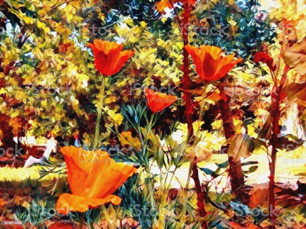 Vibrant Poppy Flowers stock photo