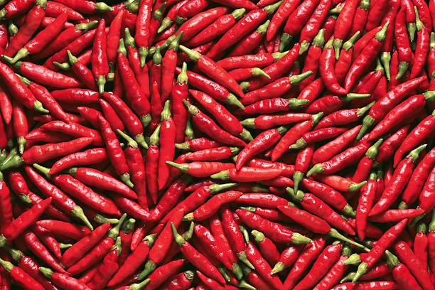 vibrant red pepper - chilli stock photos and pictures