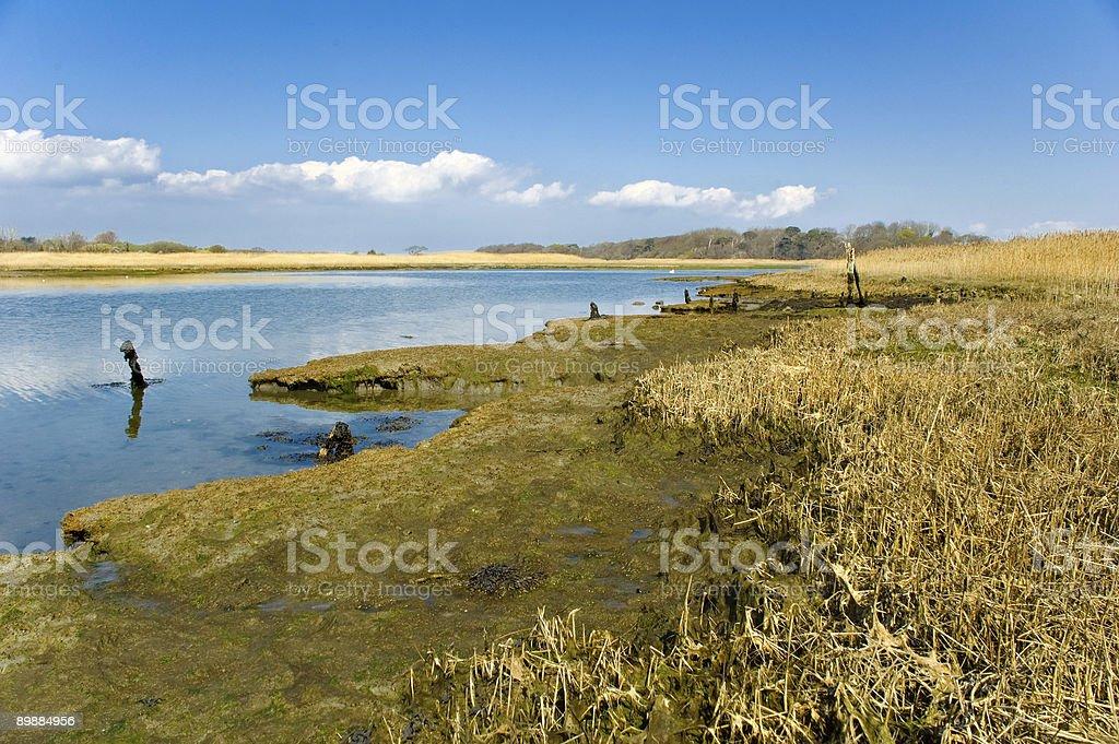 Яркие Река Устье Стоковые фото Стоковая фотография