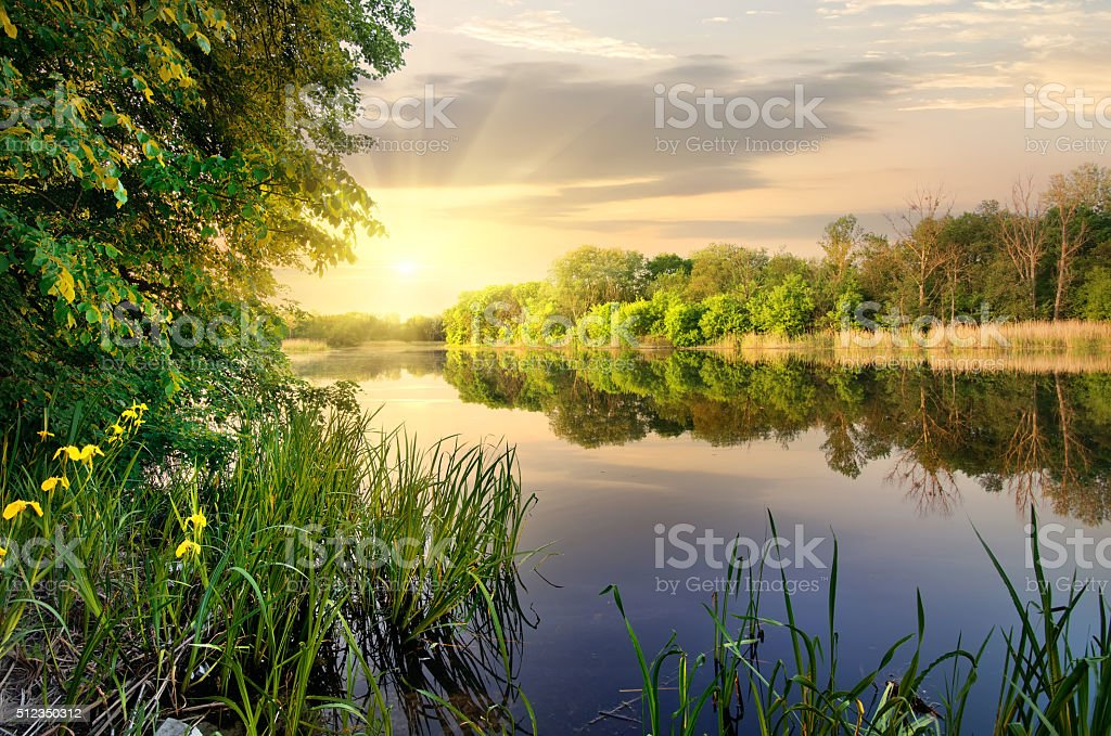 Vibrant sunset on river stock photo