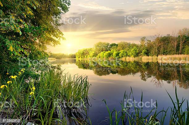 Photo of Vibrant sunset on river