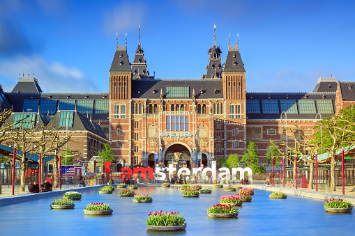 Amsterdam, The Netherlands - May 2, 2014: Beautiful vibrant of tulips in the pond in front of the Rijksmuseum (National state museum) in Amsterdam in spring on May 2, 2014
