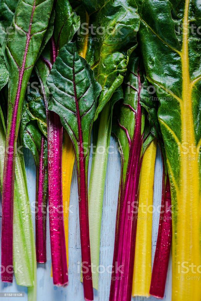 Vibrant vegetable, swiss rainbow chard stock photo