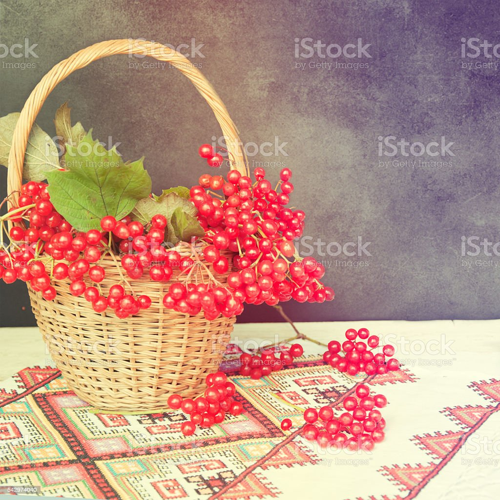 Viburnum in basket on embroidered towel. Ukrainian symbol. stock photo