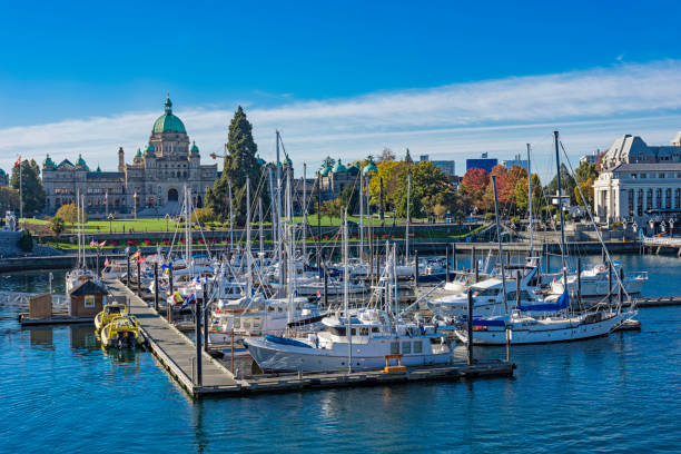 Victoria Harbor with the British Columbia Parliament Building Victoria British Columbia Canada Victoria Harbor with the British Columbia Parliament Building in the background Victoria British Columbia Canada british columbia stock pictures, royalty-free photos & images