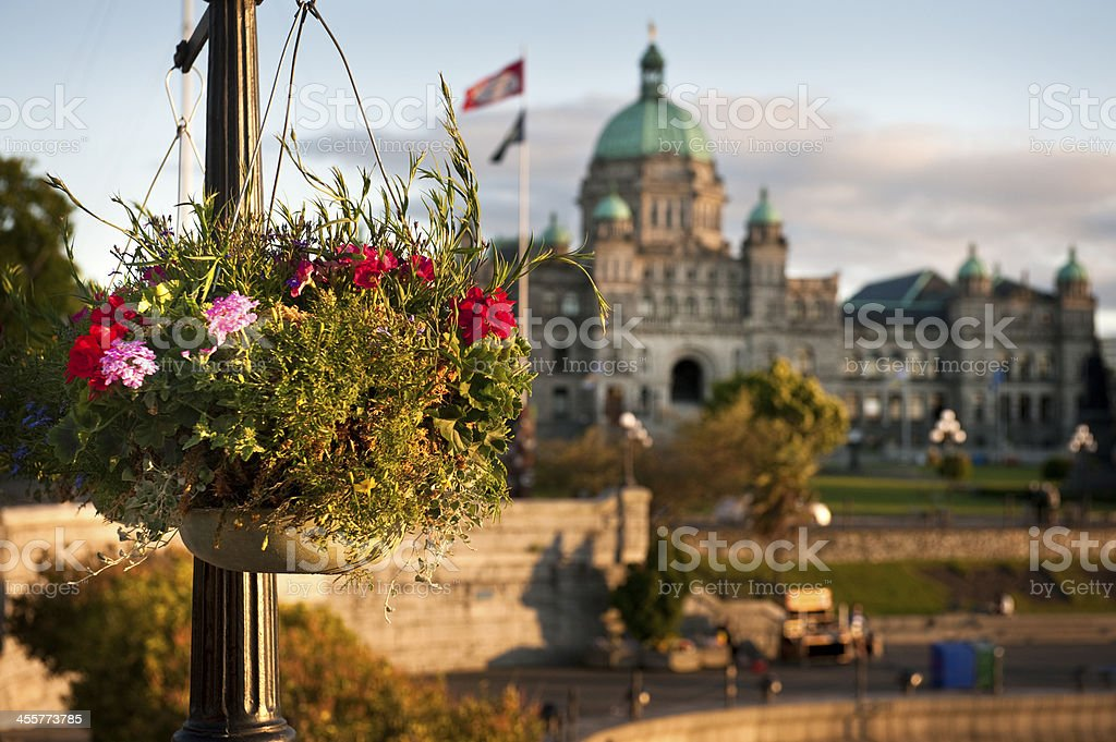 Victoria Inner Harbor Hanging Basket royalty-free stock photo
