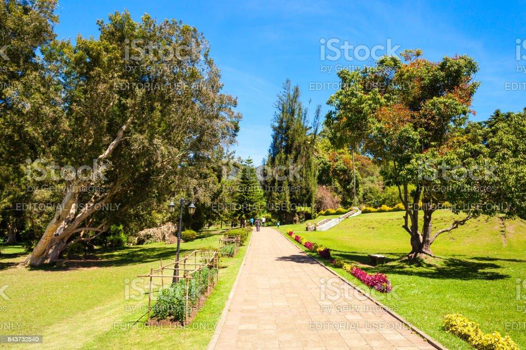 Victoria Park Nuwara Eliya Stock Photo Download Image Now
