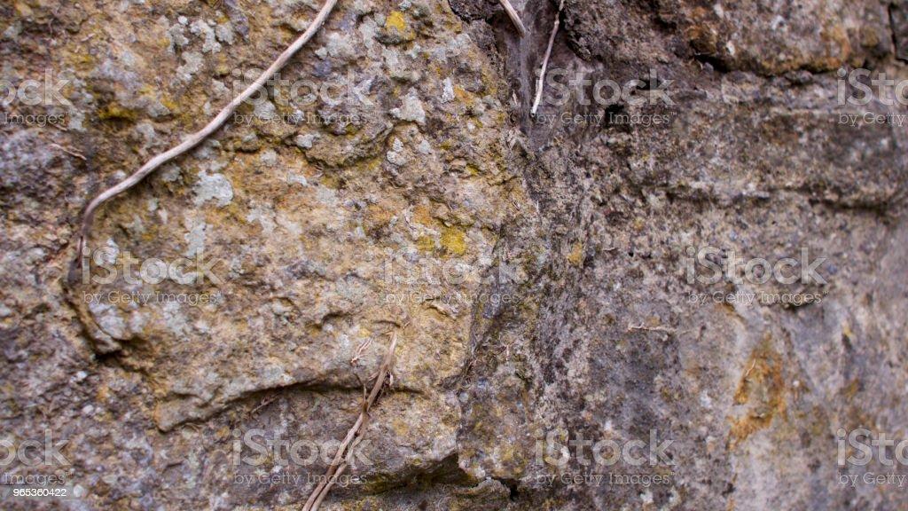 Chemin de briques victorienne et plus vieux mur de Pierre de style - Photo de Allée de jardin libre de droits