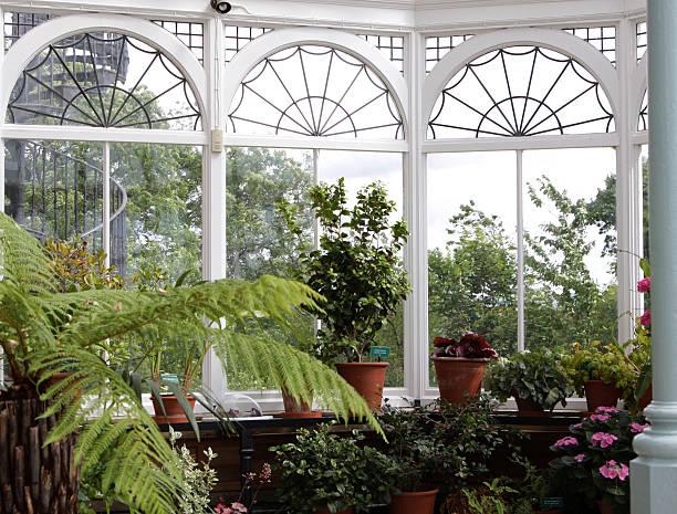 victorian conservatory stock photo