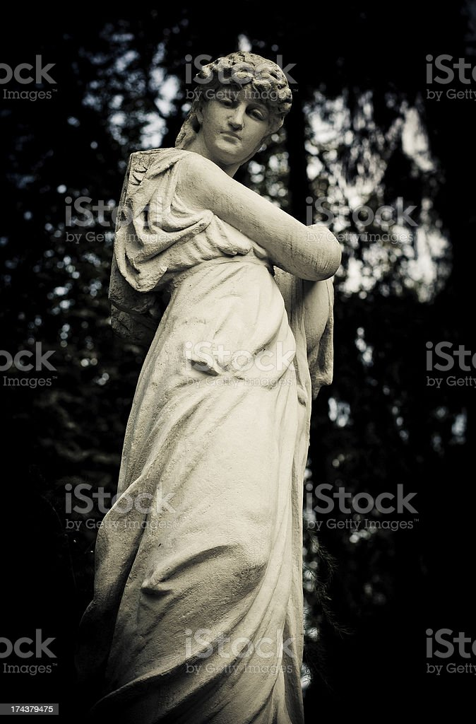 Victorian Maiden from shadows royalty-free stock photo