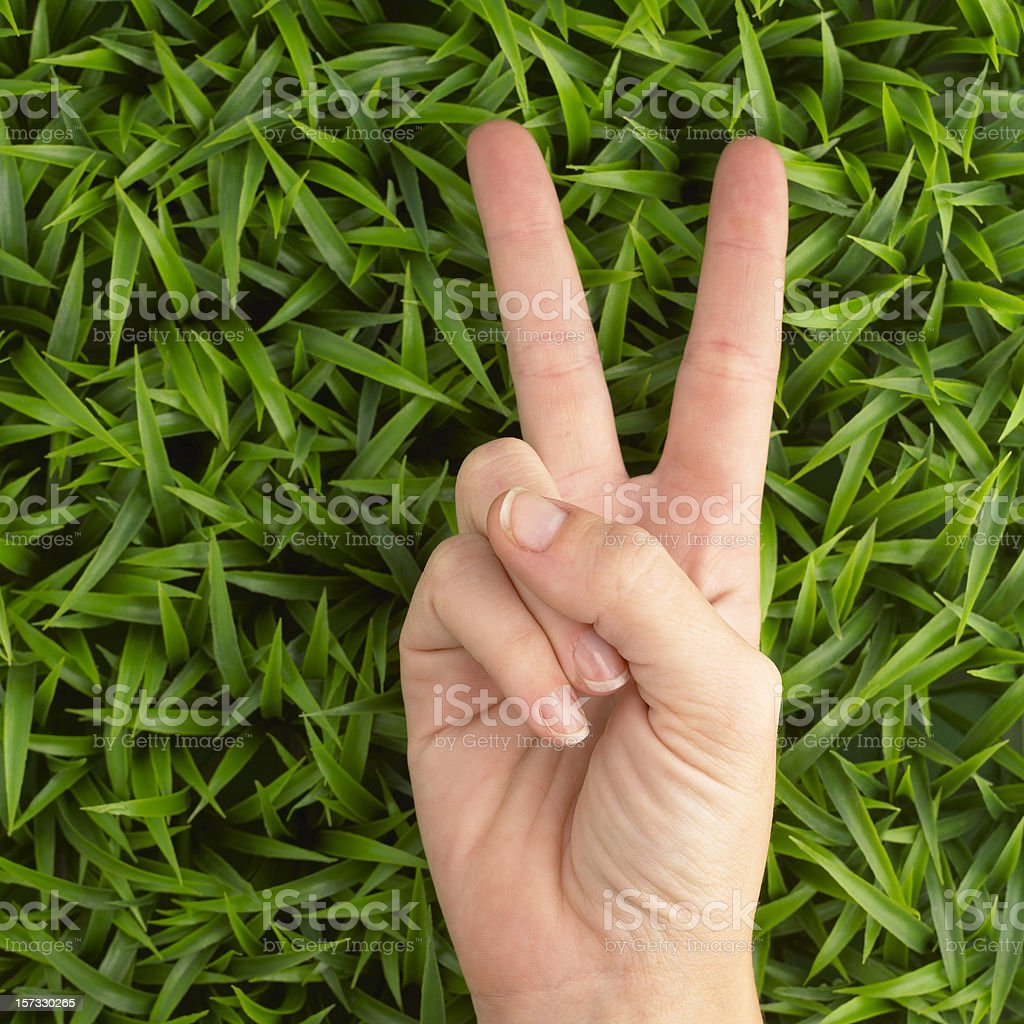 Victory sign on grass royalty-free stock photo