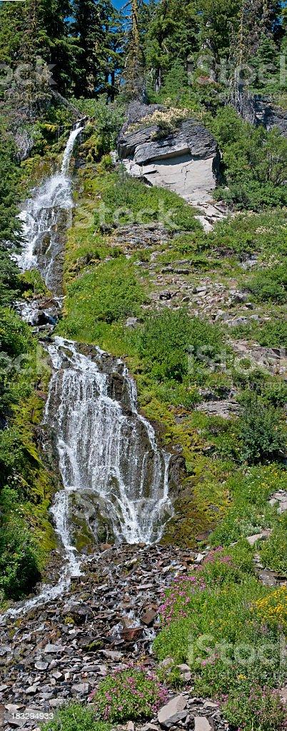 Vidae Falls and wildflowers stock photo