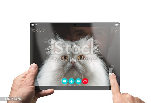 istock Video chat with a funny white Persian cat. Isolated on white background 1140143170