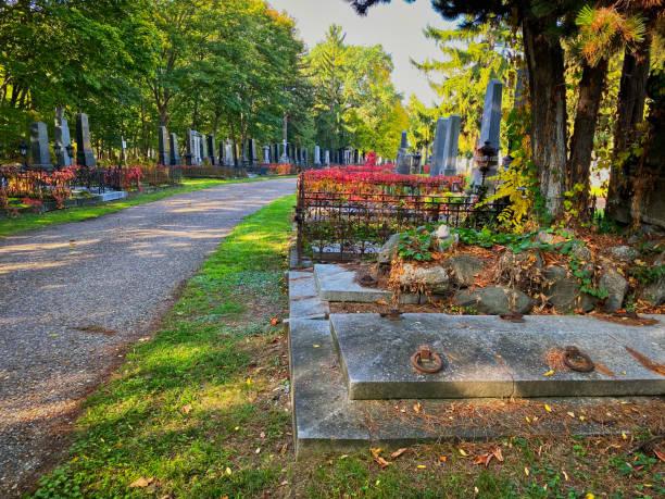 Vienna Central Cemetery stock photo