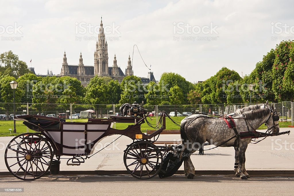 Rathaus Vienna, Austria stock photo