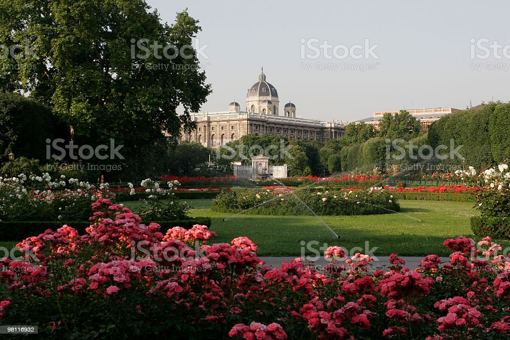 Vienna in the morning royalty-free stock photo