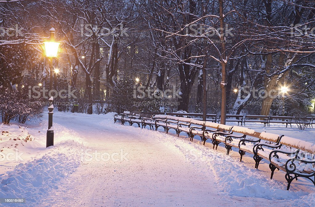 Vienna - Stadtpark in winter morning royalty-free stock photo
