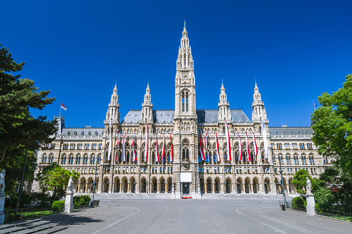 Wiener Rathaus - Vienna Town Hall - gothic building along the Ringstraße - empty Rathausplatz without people on a beautiful summer day.