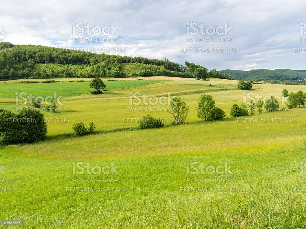 Vienna Woods landscape in Austria stock photo