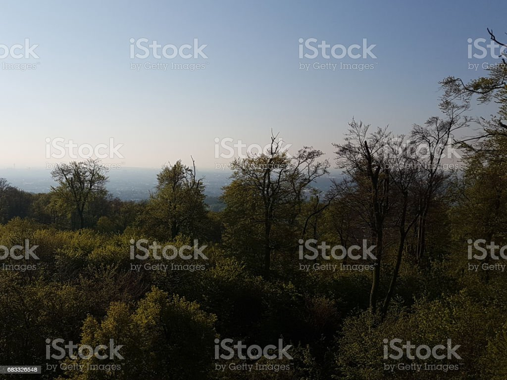 wienerwald royalty-free stock photo