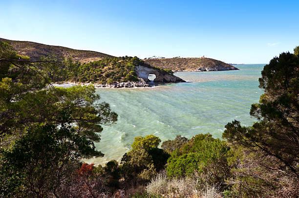 """vieste coast mit dem """"architiello"""" - baumgruppe stock-fotos und bilder"""