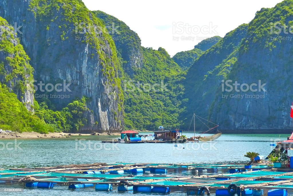 Vietnam- baie d'halong, Cua Van, village, pêcheurs stock photo
