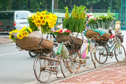 Vietnam florist vendor on bicycle on street in Hanoi.