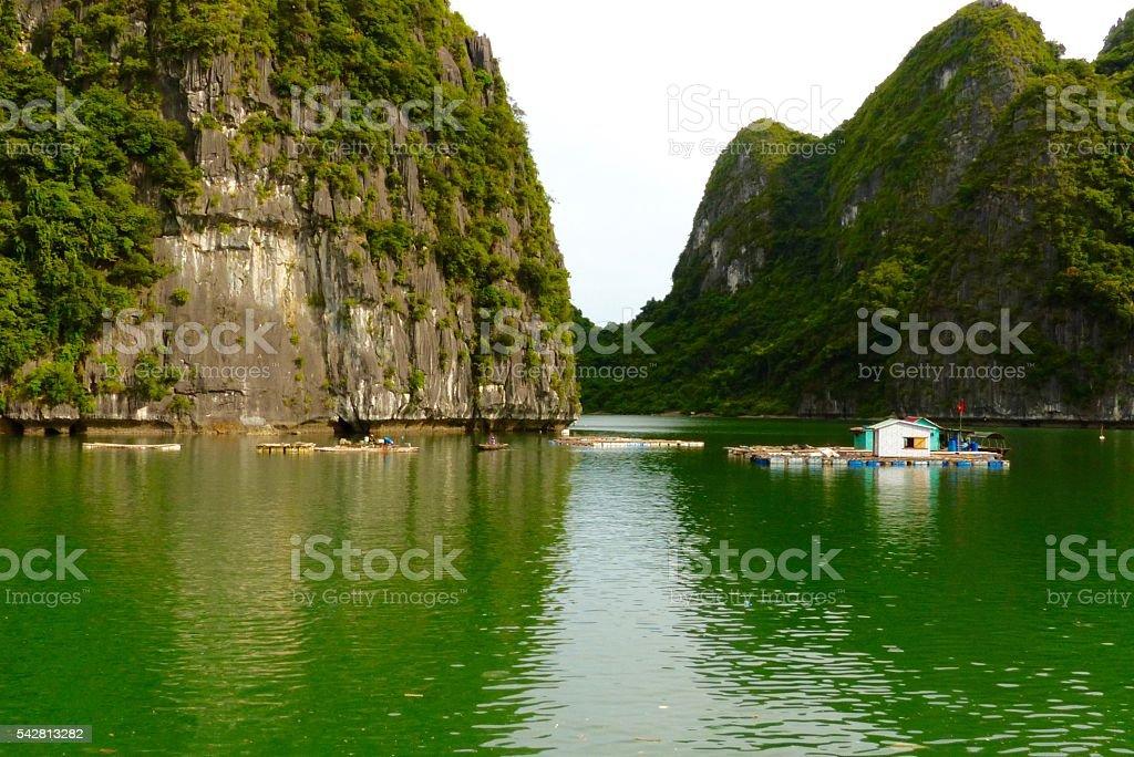 Vietnam- baie d'halong, paysage,pain de sucre stock photo