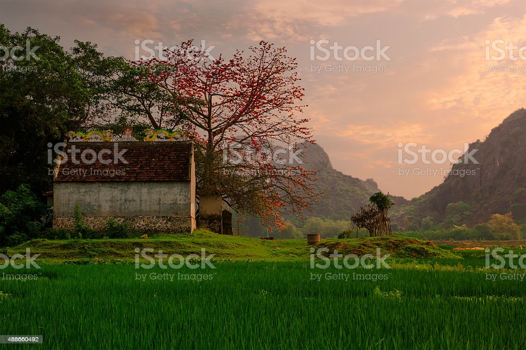 Vietnam village stock photo