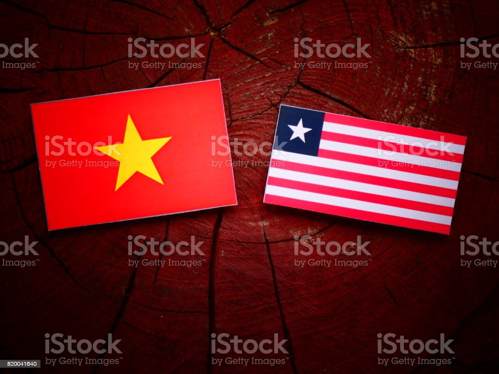 Vietnamese flag with Liberian flag on a tree stump isolated stock photo