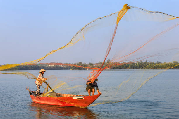Vietnamese man catching fishes in Thu Bon River near Hoi An, central Vietnam stock photo