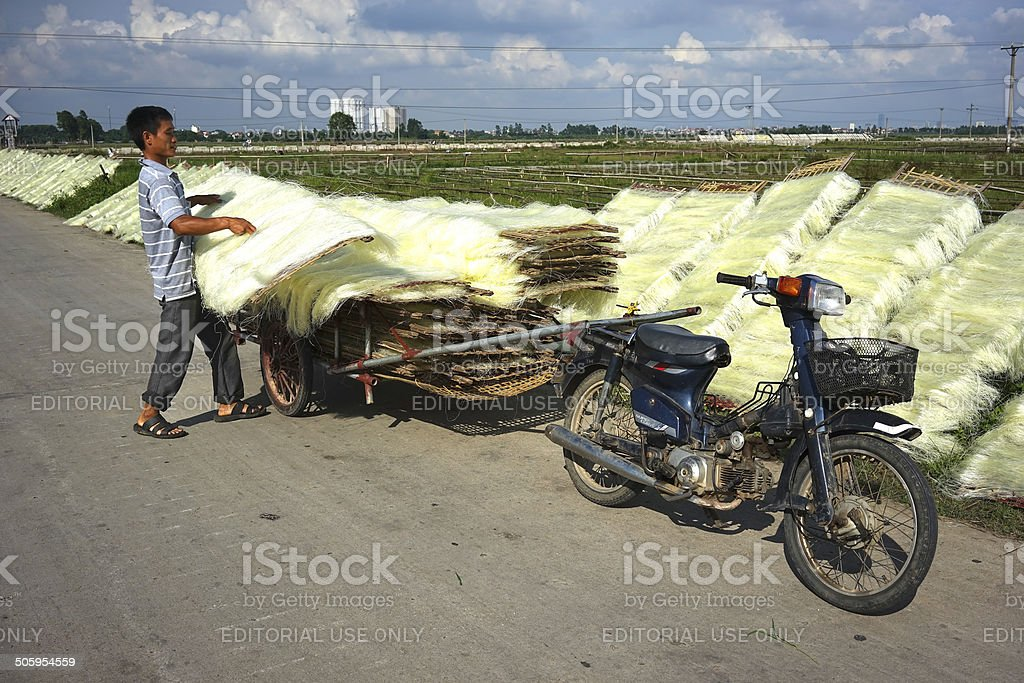Vietnamese noodles royalty-free stock photo