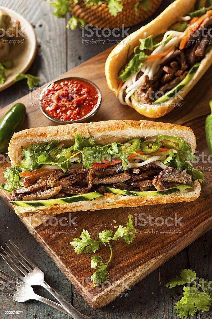 Vietnamese Pork Banh Mi Sandwich stock photo