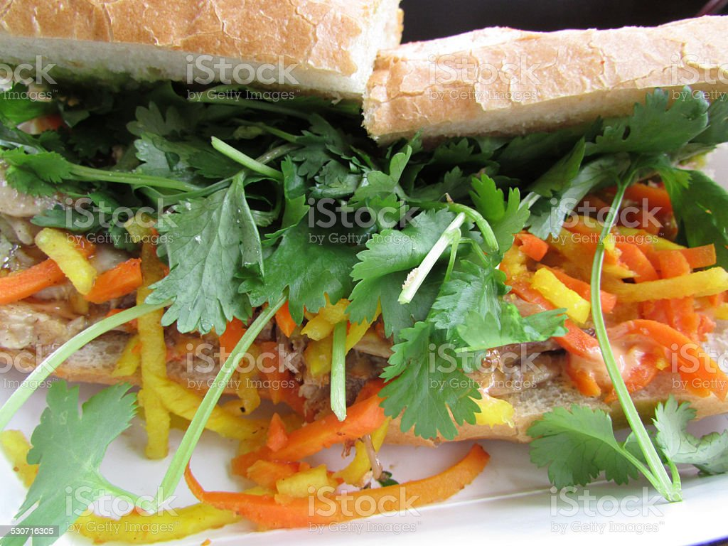 Vietnamese Pulled Pork Banh Mi Sandwich stock photo