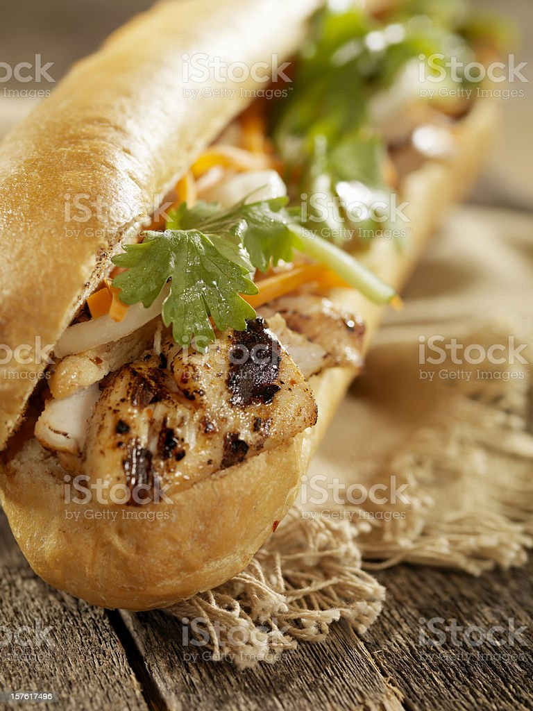 Vietnamese Sub Sandwich with Grilled Chicken royalty-free stock photo