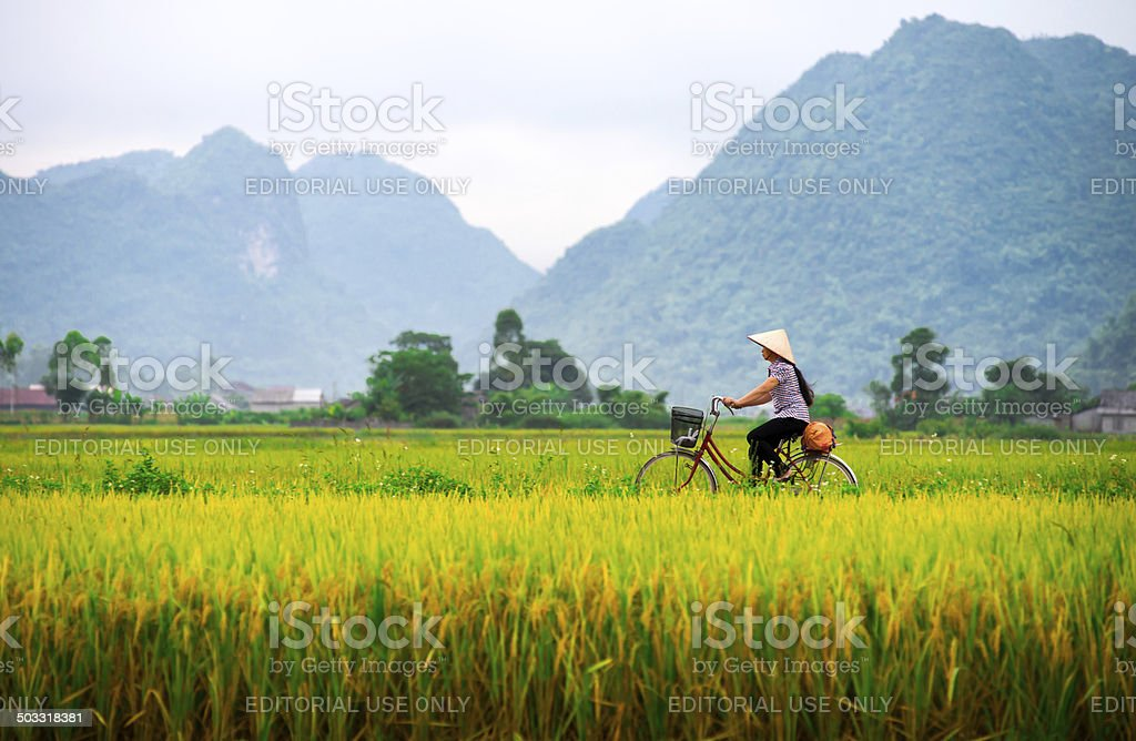 Vietnamese woman and her ride in a valley stock photo